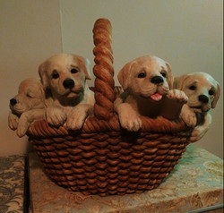 23 - Dogs in Basket