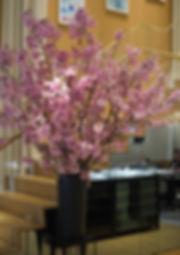 陽光桜の生け込み