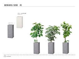 観葉植物の提案