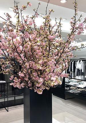 河津桜の生け込み