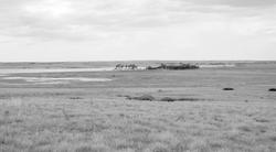 landscape_wetlands