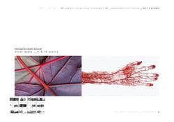 PhD D Batista abt_part 0_FIO_best project