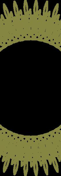 roseta 72dpi.png