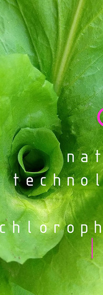 PhD D Batista nature technology clorophy