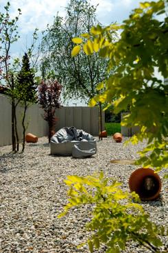 studio db ai atrium water garden mini tree park robinia prunus