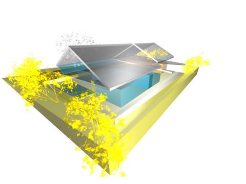 studio db ai triangle garden house architecture (3)
