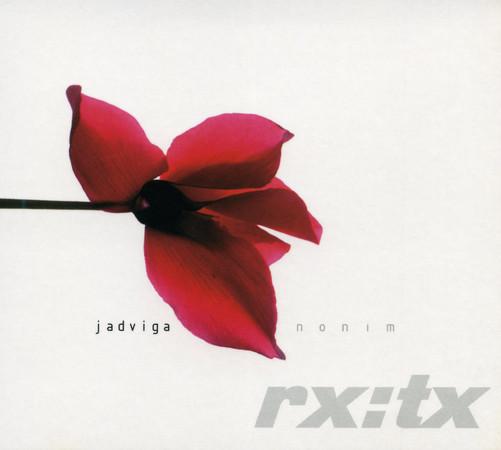 studio db ai graphic design jadviga
