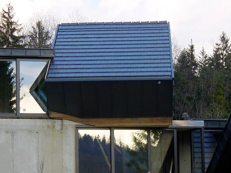 studio db ai amphibian house green architecture