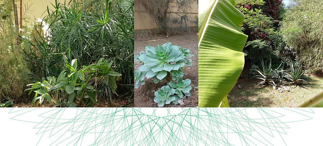 16_Biodiverse buffs & Green Thumbers C.j