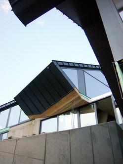 studio db ai amphibian dwelling architecture
