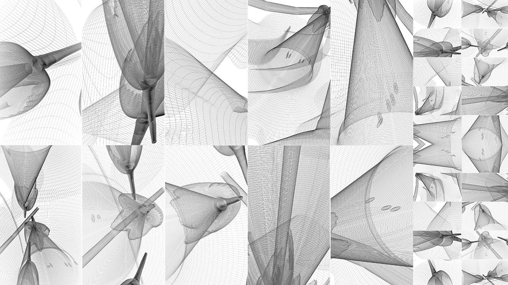 Dominika Batista PhD Science of Design method - Cinematic sectioning
