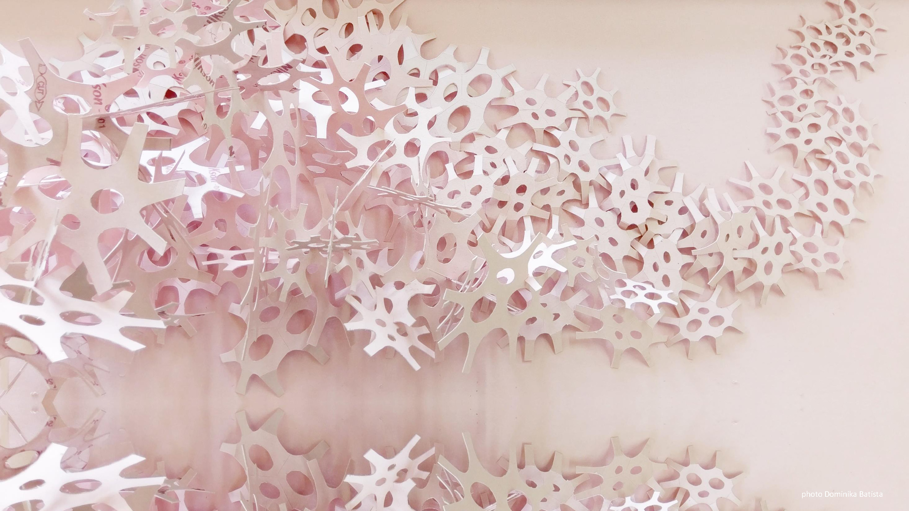 Dominika Batista PhD architectural fabrication