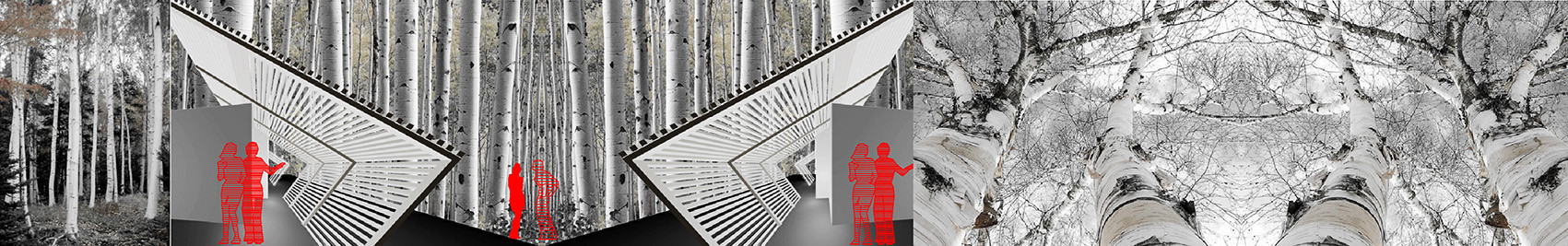 studio db ai house for her_dwelling of 44 birches  (8)