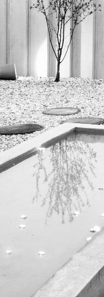 studio db ai timeless Water pebbles garden