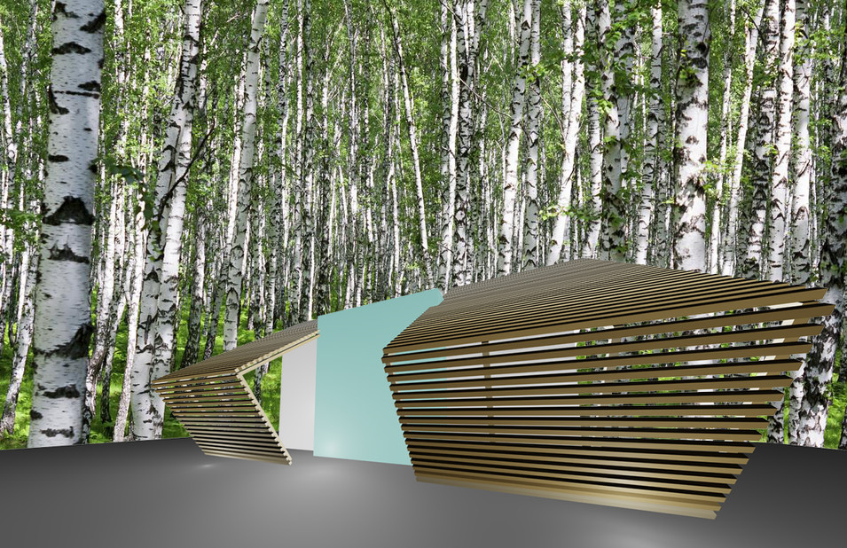 studio db ai house for her_dwelling of 44 birches  wood architecture