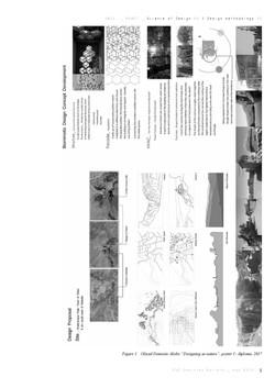 PhD D Batista SD II_DM II_ biomimetic ar