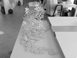 PhD D Batista complex model fabrication