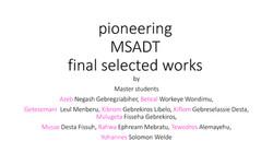 PhD D Batista MSADT SD I DM I_final work