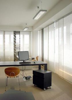 Dominika Batista PhD, Green design concept