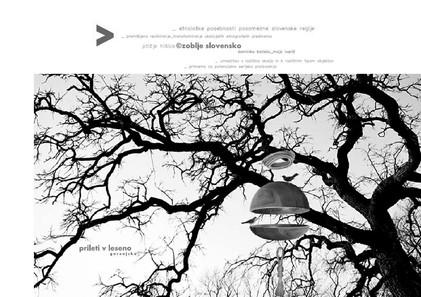 studio db ai bird feeder design