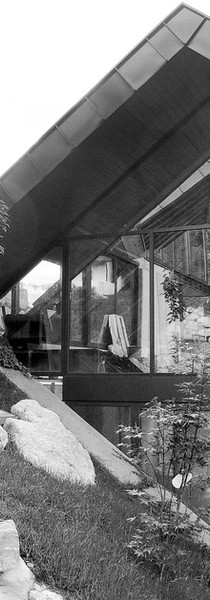 studio db ai timeless Amphibian house