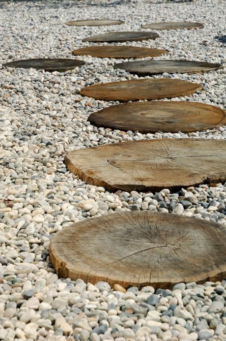 studio db ai atrium water garden wooden stepping stones
