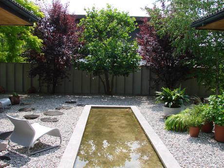 studio db ai atrium water garden water mirror pool
