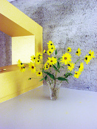 studio db ai luxury house atrium home restroom design