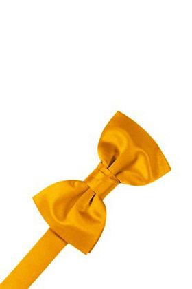 Tangerine Bow Tie
