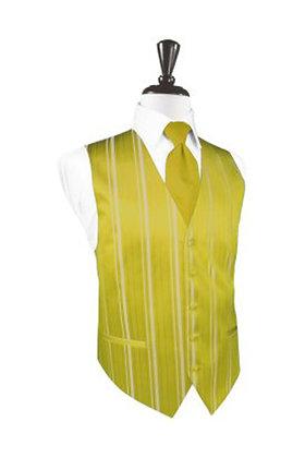 Striped Satin Willow Vest
