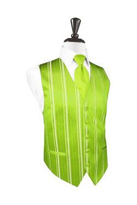 Striped Satin Lime Vest