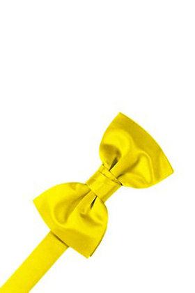 Sunbeam Bow Tie