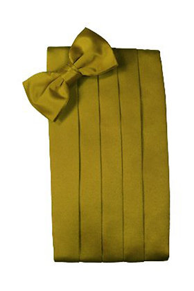 New Gold Cummerbund