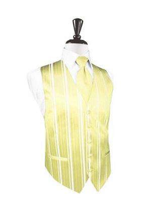 Striped Satin Canary Vest
