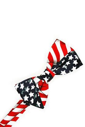Waving Flag Ties