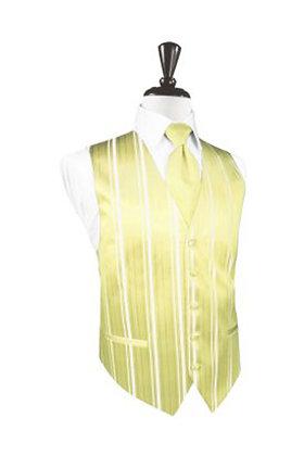 Striped Satin Banana Vest