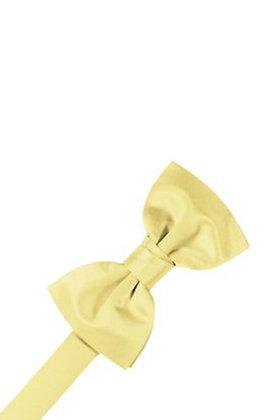 Canary Bow Tie