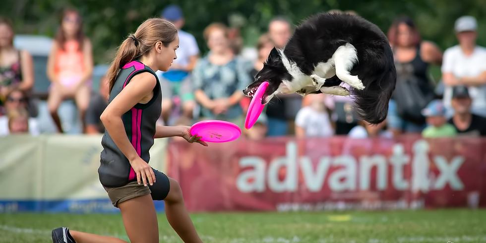 Kurs Dogfrisbee