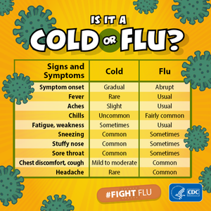 infographic: signs and symptoms of cold and flu