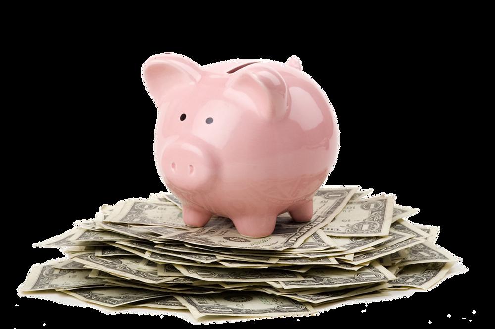 piggy bank sitting on pile of dollar bills