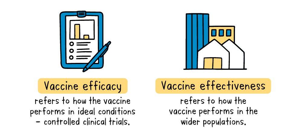 infographic: vaccine efficacy vs. vaccine effectiveness