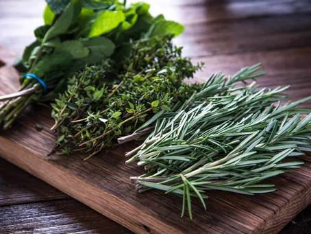 FREE Blending Class: The Power of Herbs