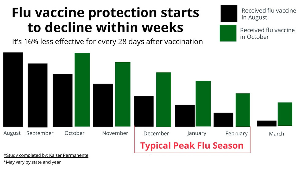 chart: flu vaccine protection over time