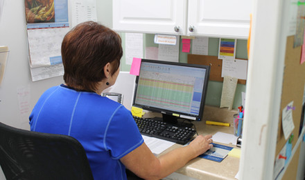 Wolfe's Pharmacy team member entering data into computer