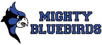 No Background Mighty Bluebirds Full Logo