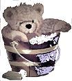 bearinbucketlogo.jpg