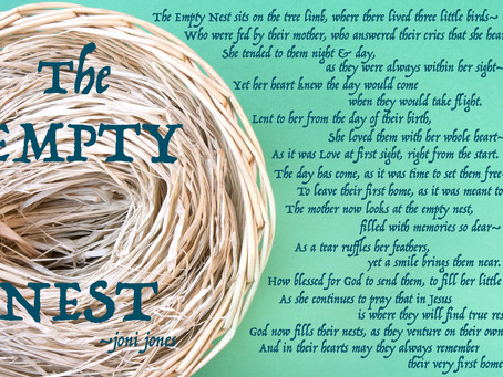 Day 20: The Empty Nest