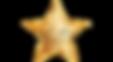 Hollywood Aesthetics logo_4x.png