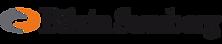 Bilzin Submerg logo_no background.png