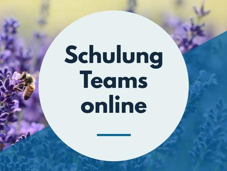 Teams Schulung online von Letec